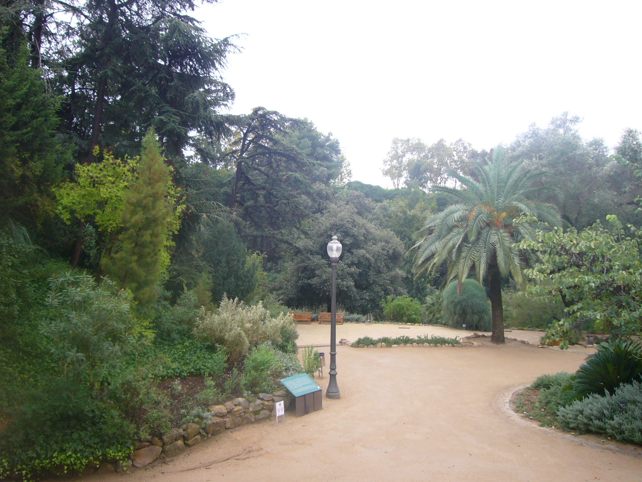 Jardí Botànic Històric (Barcelona)-3.JPG