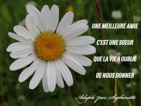 Citation Amie Soeur