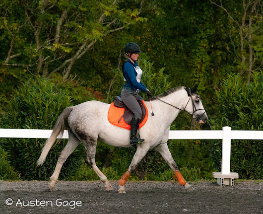 Twilight Eventing: Stadium and XC