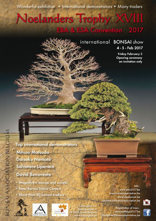 European Bonsai Convention