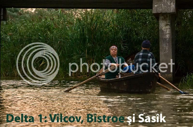 Danube,Delta,Moldova Birds,Ion Grosu