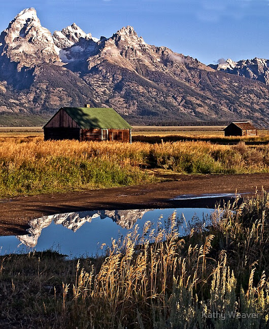 """Mormon Row Homestead - Grand Tetons National Park"" by Kathy Weaver 