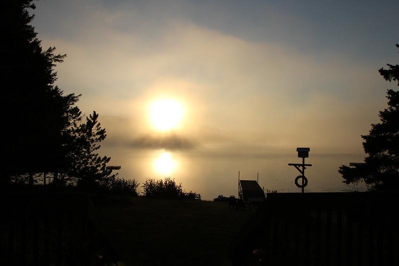 early morning golden mist2