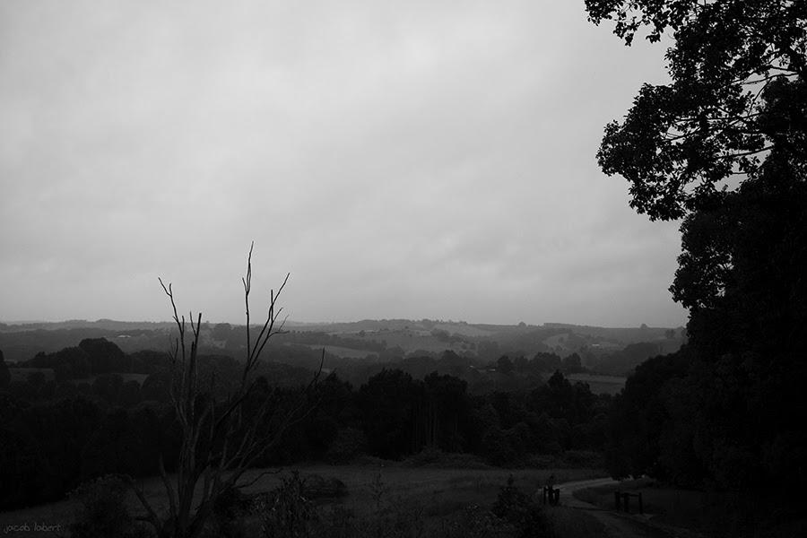 b+w rainscape