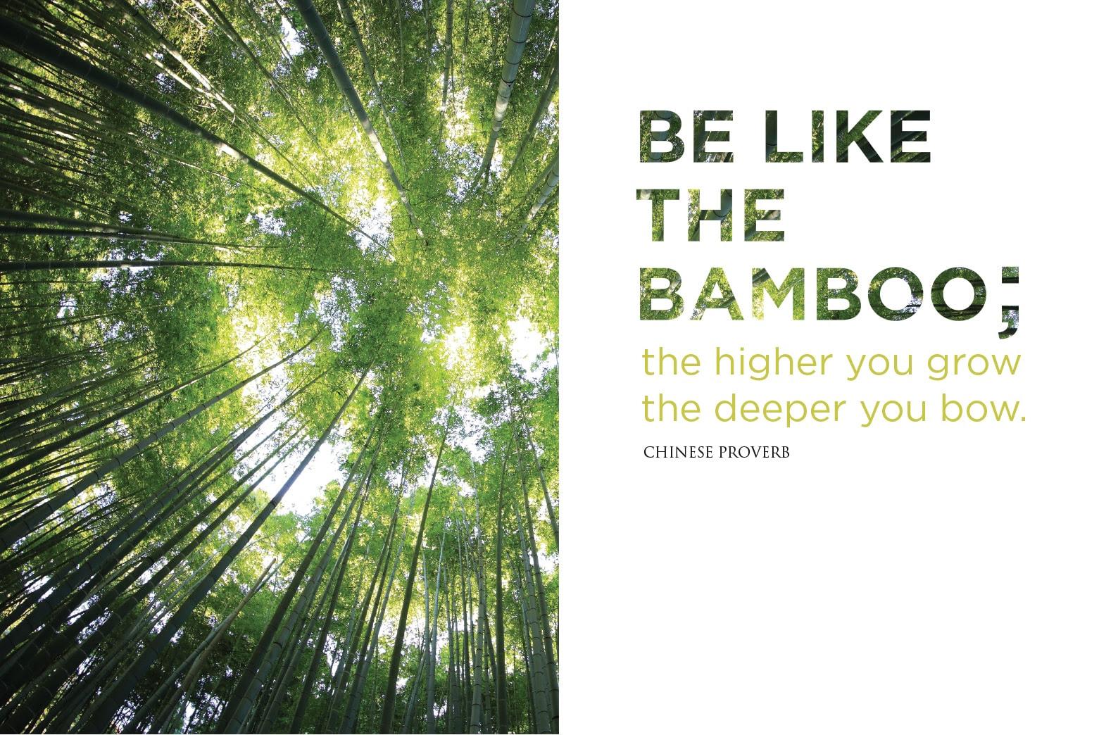Be Like The Bamboo Heartfulness Magazine