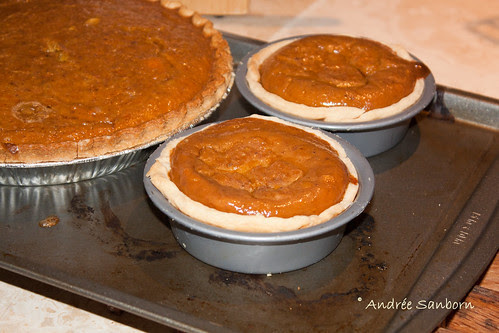 Squash Pie from Our Red Kuri Squash-1.jpg