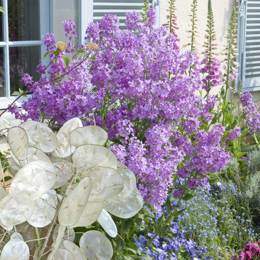 Les Jardins De La Cure Fleurylesaubrais Chiffre D