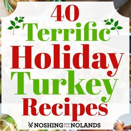 40 Terrific Holiday Turkey Recipes for all your holiday needs.