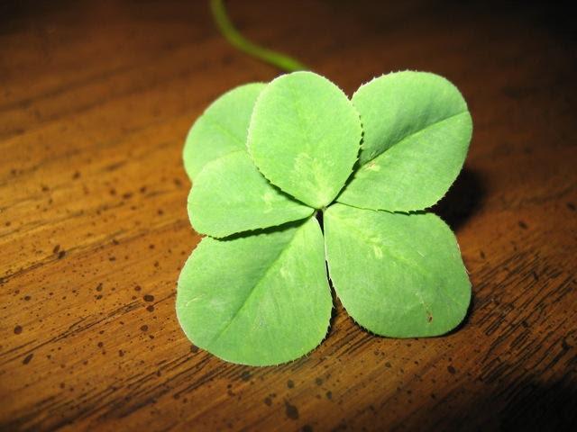 six leaf