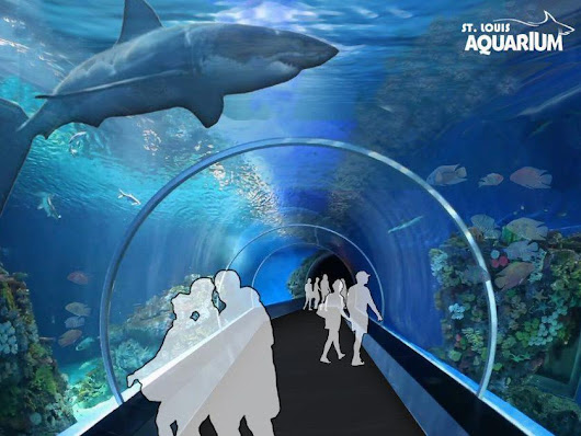 Aquarium planned for Union Station in downtown St. Louis
