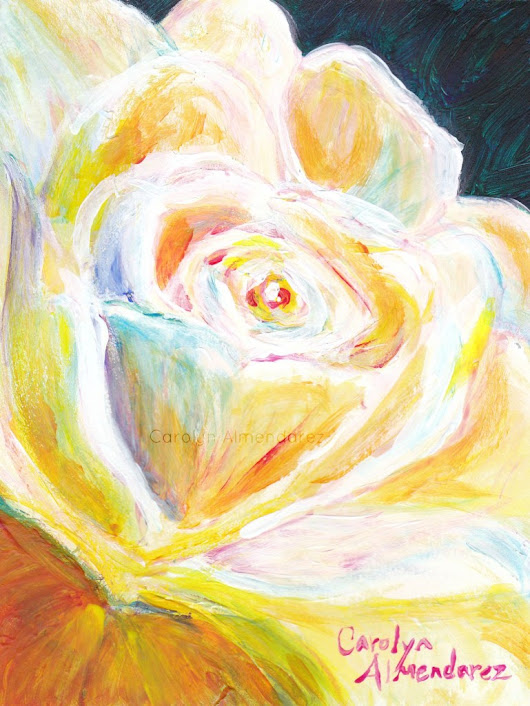 White Rose | Carolyn Almendarez Art