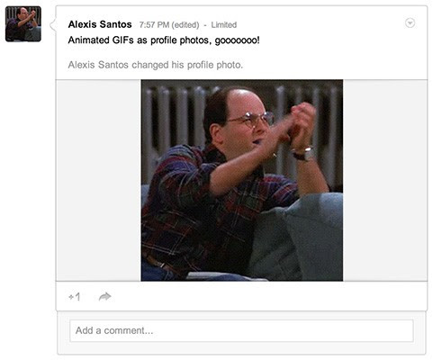 Google+ profile photos can now be animated GIFs