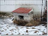 photo Doghouse-2_zpse6af5a65.jpg