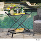 Christopher Knight Home Annika Outdoor Industrial Bar Cart by Gold