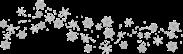 snowtransparent