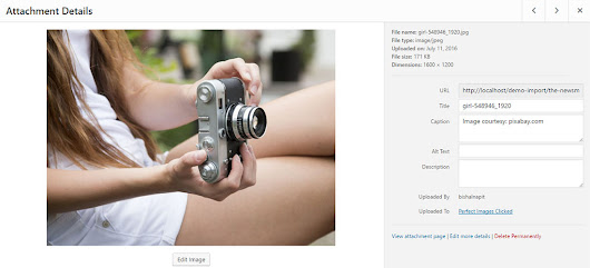 Display Image Caption Under Featured Images In WordPress | NapitWPTech