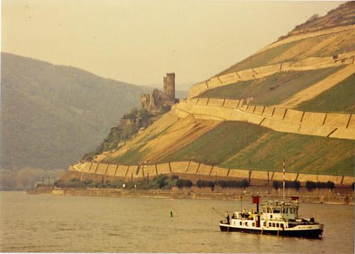 Rhine 9