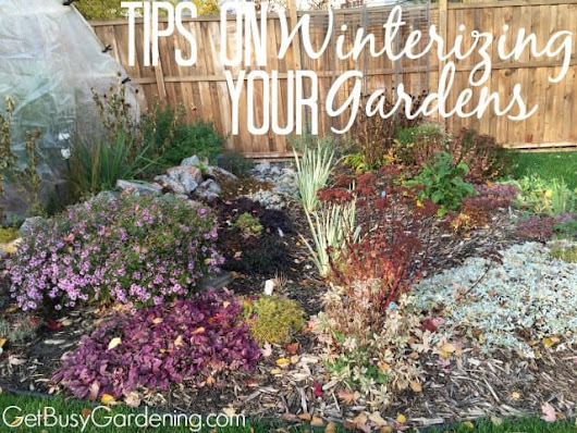 Tips on Winterizing Your Gardens