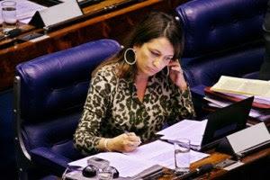 Senadora Kátia Abreu em plenário. Foto: Divulgação
