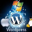 I will install your wordpress and your themes, plugins for $5