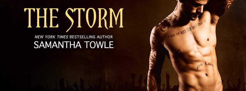 the storm banner
