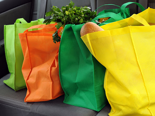 Reports Of Grocery Bag Bacteria May Be Overblown