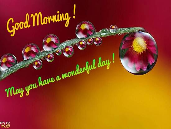 A Very Good Morning To You Free Good Morning Ecards Greeting Cards