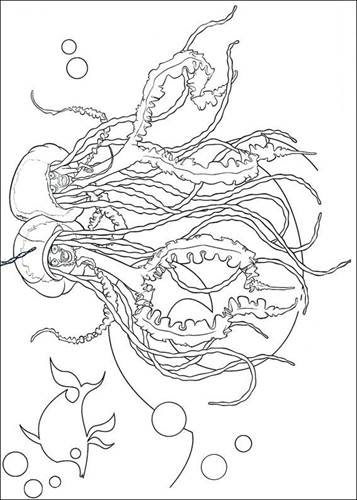 Kids-n-fun.com | 13 coloring pages of Shark Tale