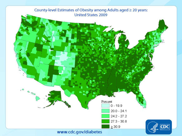 Obesity problem: obesity us chart on obesity death, obesity in canada, obesity statistics in america, obesity rates in america 2013, obesity states, obesity in us 2012, diabetes trends map, food trends map, flu trends map,