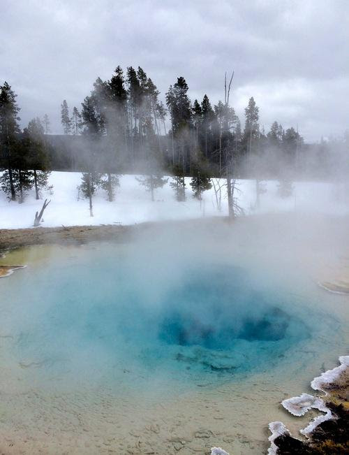 Yellowstone NOW?! Why It's Actually a Great Idea
