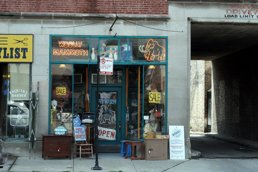 Woolly Mammoth Storefront