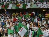 supporters Algériens  Coupe du Monde 2014