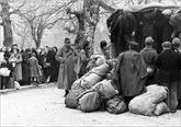 Εκτοπισμός  ελλήνων  εβραίων