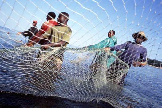 Overfishing destroying livelihoods | Africa Renewal Online
