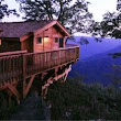 Five Virginia Glamping Destinations - Primland's Golden Eagle Tree House in Meadows of Dan is one amazing place. #BucketList #vaoutdoors | Pinterest