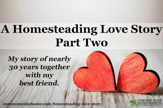 A Homesteading Love Story - Part Two - Pursuing the Dream