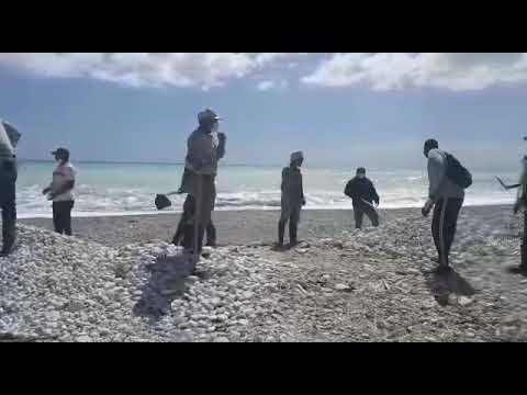 Barahona:- Dirección provincial de Ambiente devuelve las piedras extraídas en Playas de Paraíso