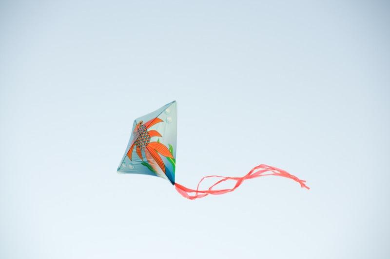 yw-go fly kite-marina barrage-090824-0005.jpg