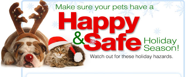 Make sure your pets have a Happy & Safe Holiday Season! Watch out for these holiday hazards.