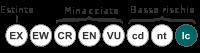 Status iucn2.3 LC it.svg