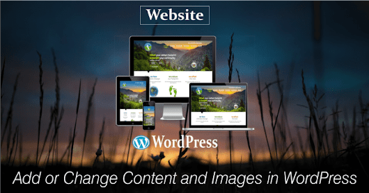 I will add or change content and images in WordPress as requirement