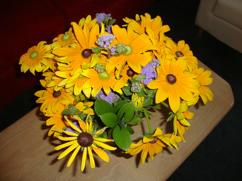 farmer's mkt flowers: green and black eyed susans
