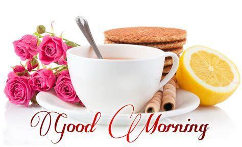 Top 85 Beautiful Good Morning Wallpapers Images And Photos