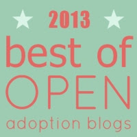 Best of Open Adoption Blogs 2013