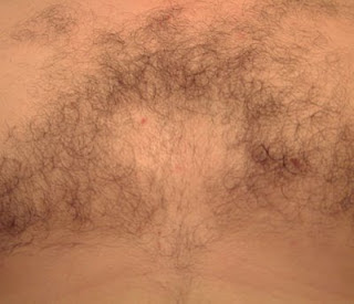 shaved chest