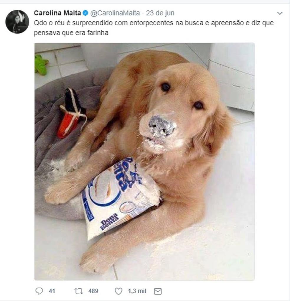 Tweets da juíza Carolina Malta, da Justiça Federal de Pernambuco, vêm conquistando os internautas (Foto: Reprodução/Twitter)