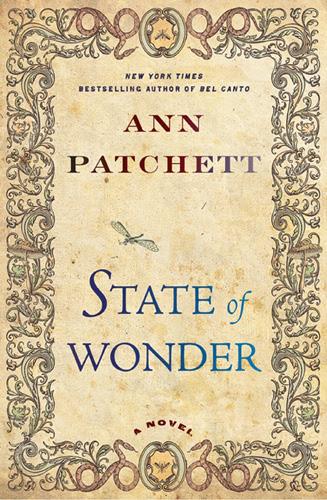 state-of-wonder1