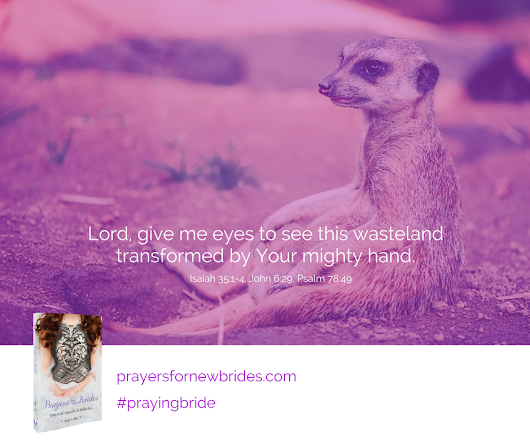 Expecting the Wilderness to Be Transformed (Fearless Series) - Prayers for New Brides