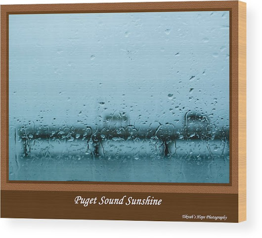 Puget Sound Sunshine Wood Print