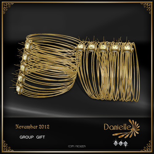 DANIELLE Group Gift For November 2012